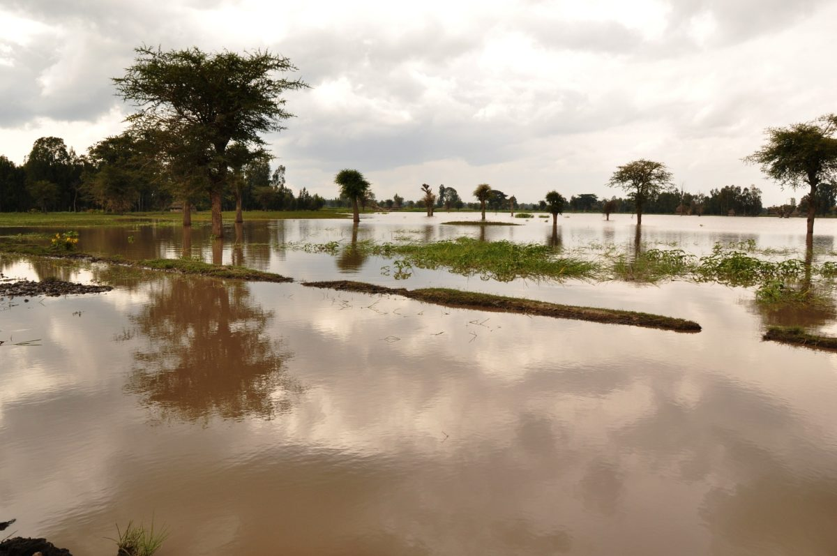 Flood Damage Image by fethiopia on Pixabay